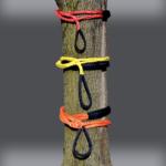 Rope Chain Slings on Tree