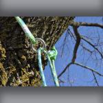 24-Strand Adjustable Friction Saver – Neolite on Tree – 2