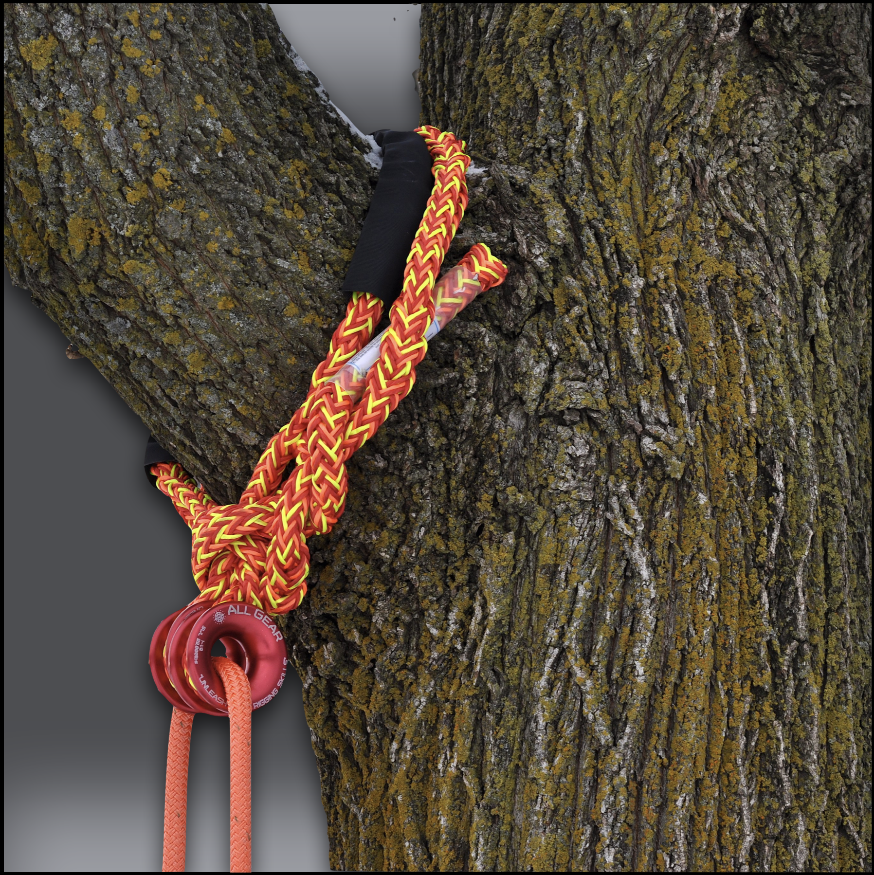 Multi Pro Double Headed Adjustable Soft Rig Sling – 5:8 Wrapped Around Tree – 2