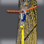 Speed Line Kit – HT Rope – In Tree Zoomed In 2