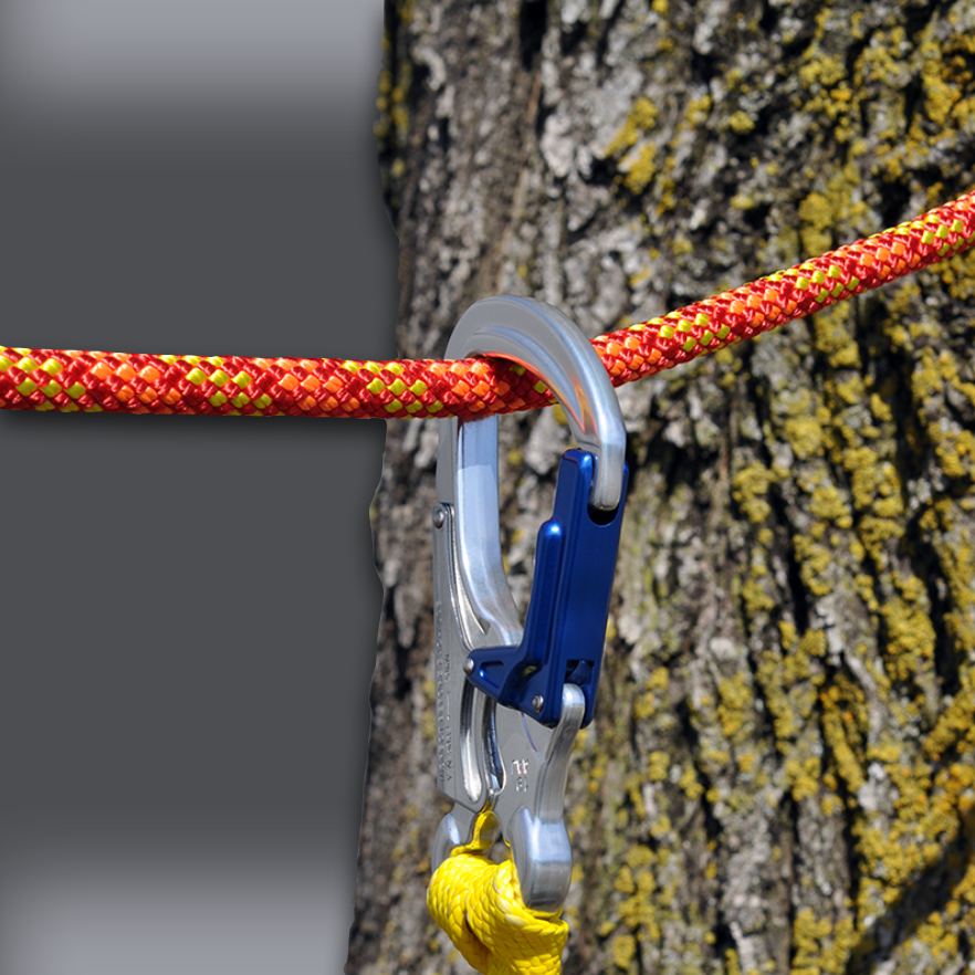 Speed Line Kit – HT Rope – In Tree Zoomed In